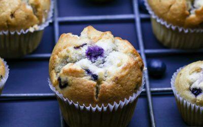 Low Sugar Blueberry Muffin